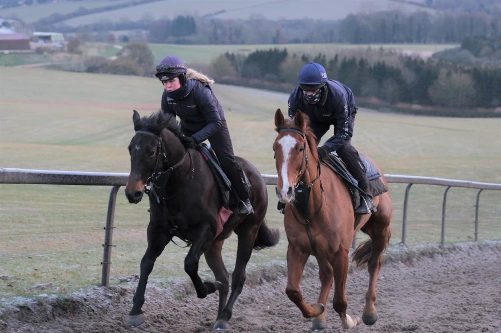 Heroes De Romay and The Sir Percy Gelding