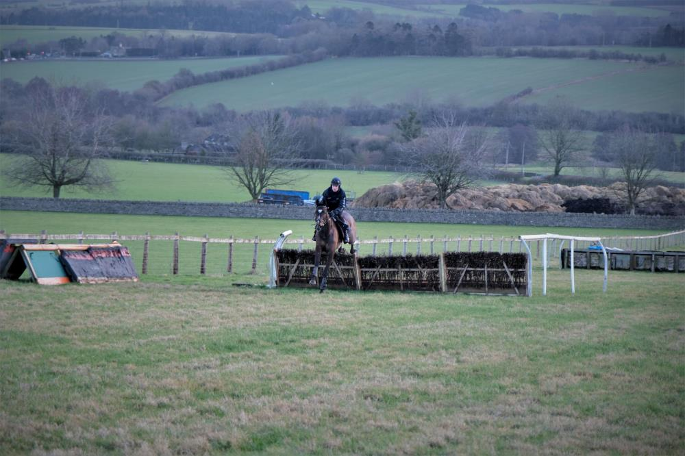 Gerard Mentor jumping hurdles this morning