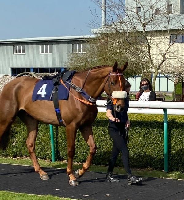 Design Icon at Southwell yesterday