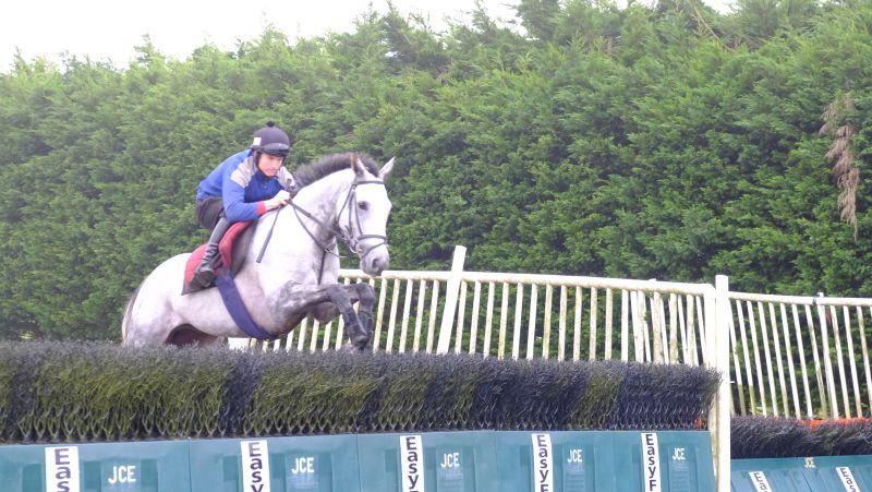 Silver Eagle jumping the plastic fences