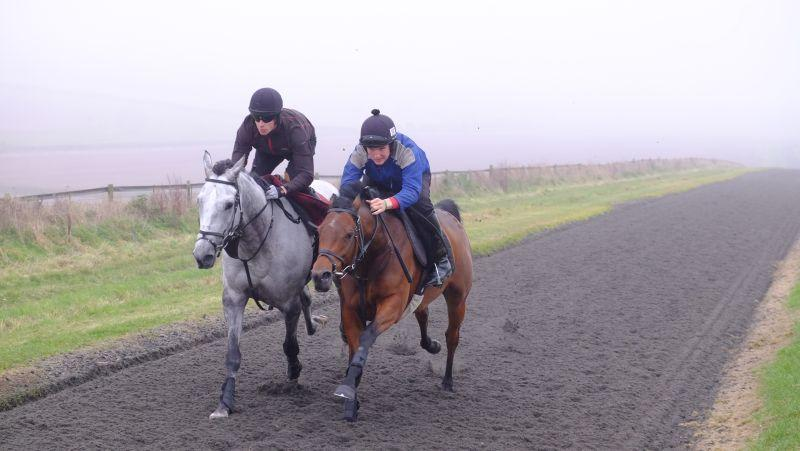 Silver Eagle and Rhianna working