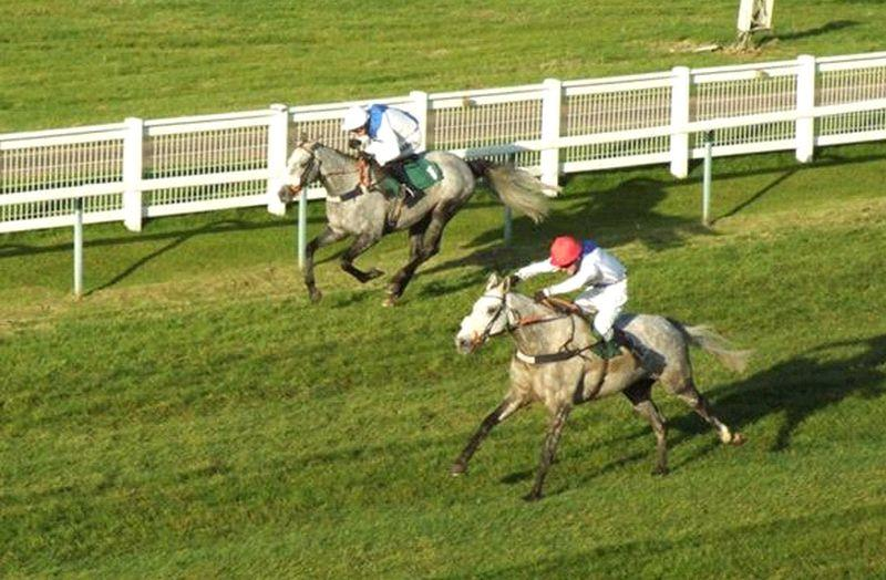 The last time they met at Towcester. Knockanrawley just getting the better of Silver Eagle