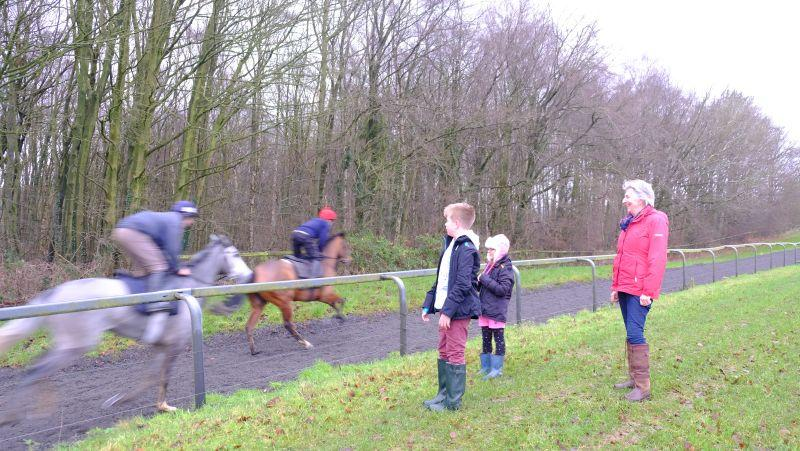 Sylvia Wilks watching her Kayf Tara x Silver Spinner go up the gallops with her grandchildren