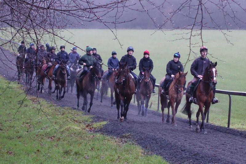 Walking back down the gallops after second lot