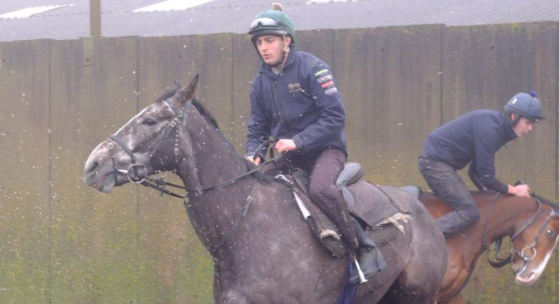 Fresh horses.. Dueling Banjos with Ballyknock Lad who looks like he is about to unship Max.. he didnt!