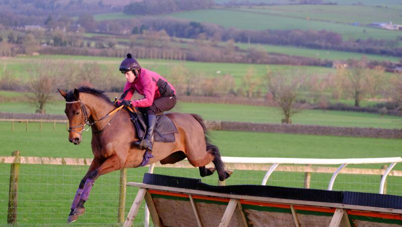 Sainte Ladylime over the new hurdle