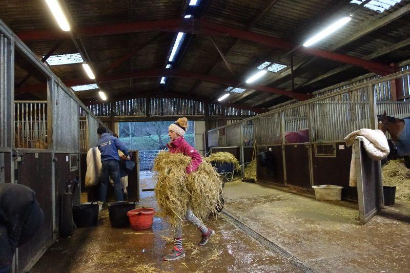Working hours .. Evening stables..