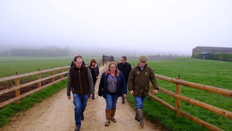 Walking back from the gallops