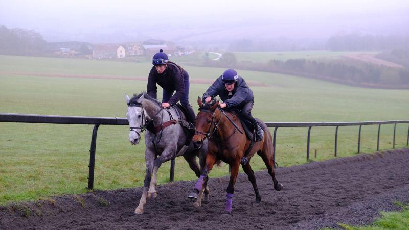 Cracked Rear View and Sainte Ladylime working
