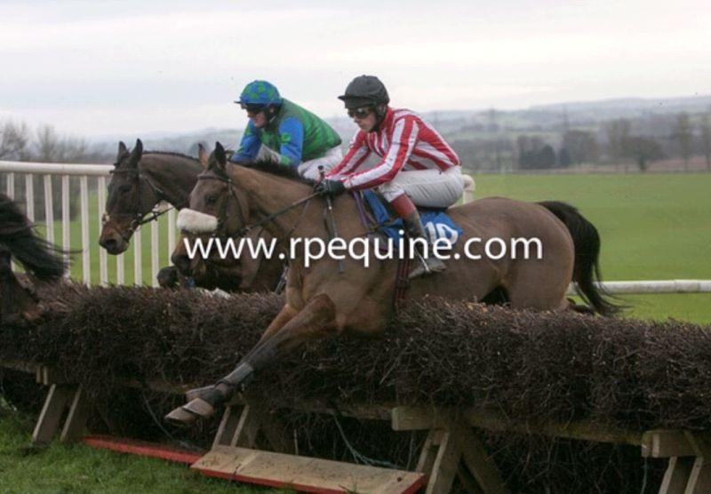 Joey Morriss riding Norman Carters point to pointer Lundy Sky