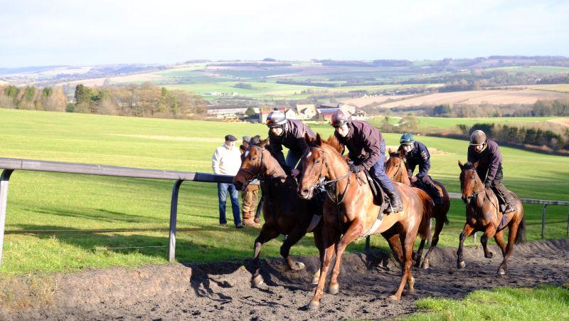 Nam Hai and Sugar Loaf Sholto leading Bandon Roc and the Shantou Gelding