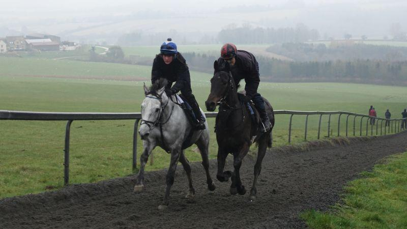 Silver Eagle and Widow On The Run