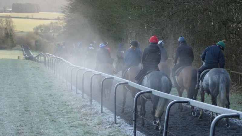 Walking down the gallops after first lot