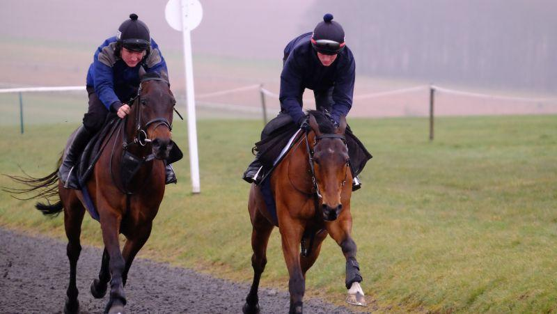 Royal Supremo (Tom Bellamy) and Gaelic Myth (Mikey Hamill) working