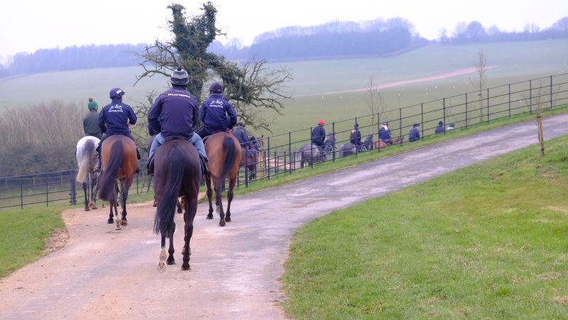 Heading off to the gallops