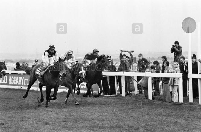 Lucius (No9) winning 1978 Grand National