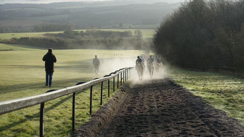 Walking back down the gallops after first lot