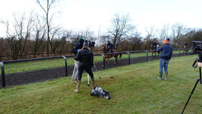 The Last Samuri trotting down the gallops past the bank of cameras