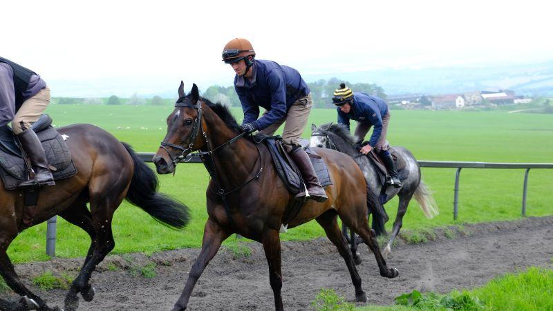 Forgotten Hero(Jack Jone and Sunblazer and Ed Bailey in behind