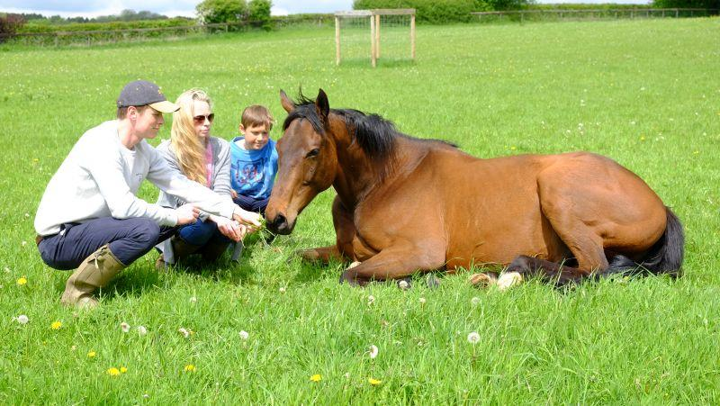 Harry, Pandora and Archie with Derrintogher Bliss