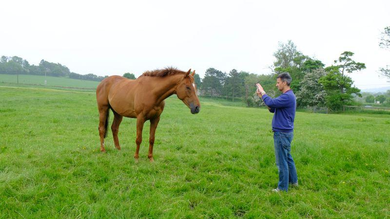 Michael Kay taking a photo of his new horse Glenforde