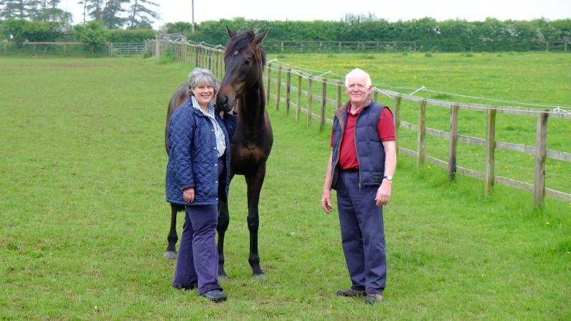 Fiona and Peter Woodhall with their latest KBRP horse Chateau Robin
