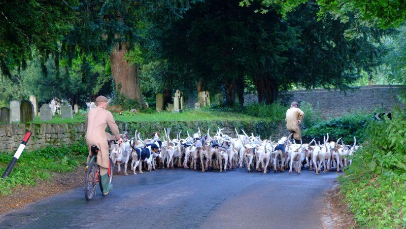Different sort of traffic problems in Withington this morning.