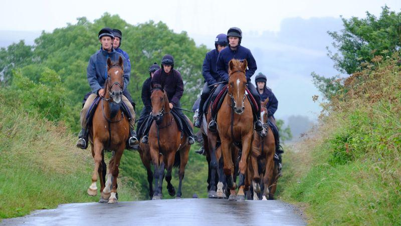 Two Flemensfirth gelding..The Last Samuri and Glenforde leading the string