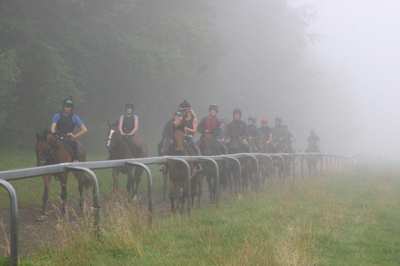 A foggy morning on the gallops this morning
