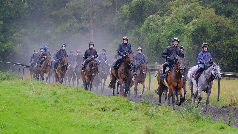 Heading back down then gallops after first lot.. wet wet