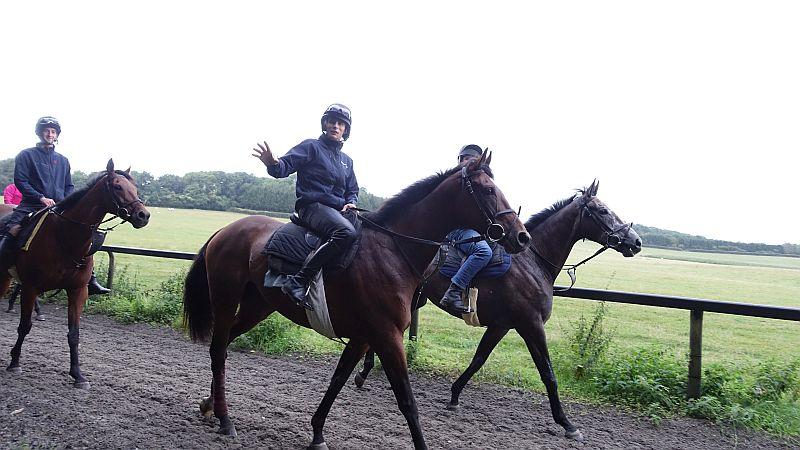 A waving Ed Cookson.. unique on a Monday morning? Ed is riding Charbel and Mat on Dueling Banjos