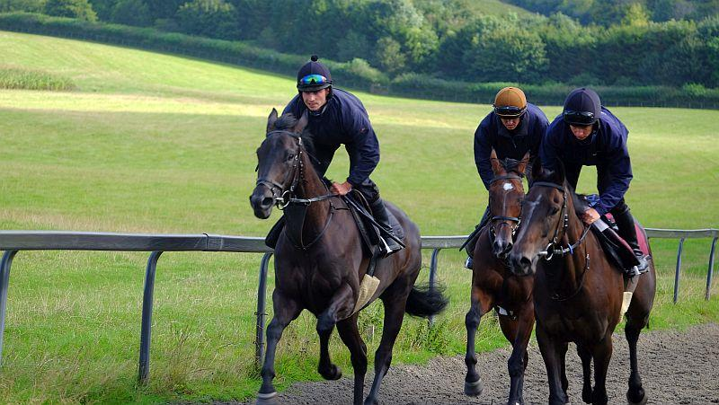 Cascaye and Milan Express with Trojan Star in behind