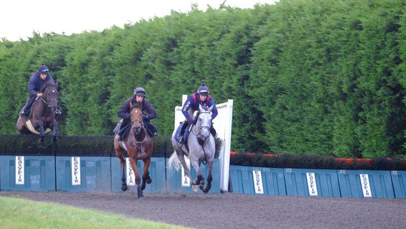 Red Spinner and Silver Eagle leading Monkhouse over fences