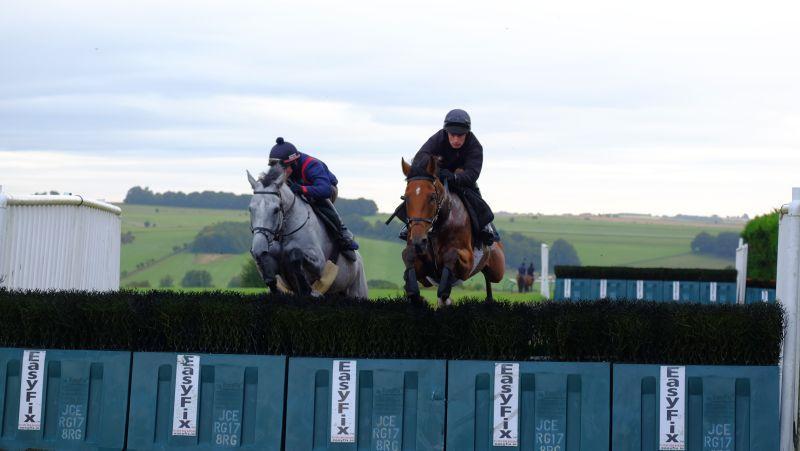 Silver Eagle (Mikey) and Red Spinner (David) jumping fences