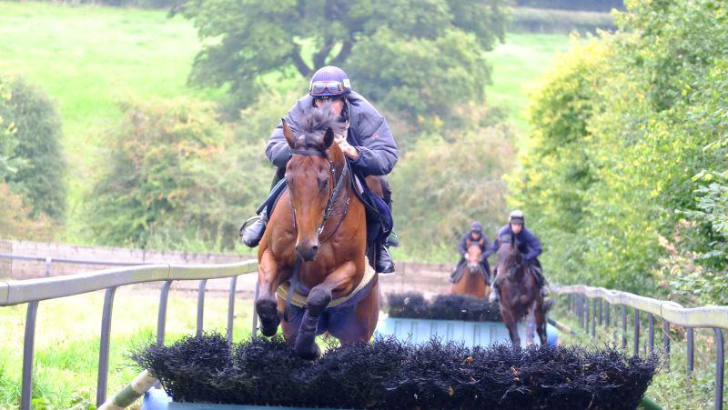 Champion Chase and Ed