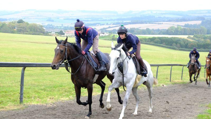Diva Reconce and Billy Elliott cantering upsides for the first time