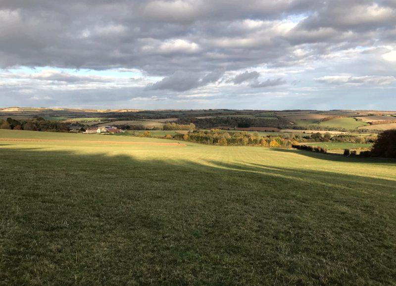The view from the top of the gallop