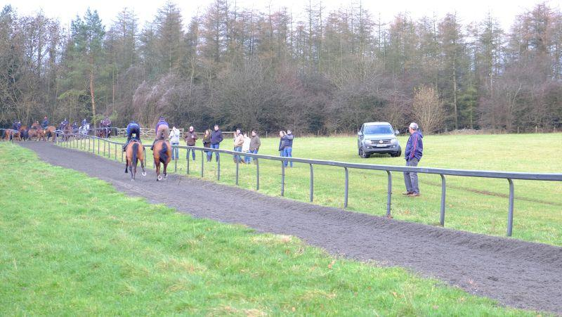 This morning's guests watching the horses on the gallop