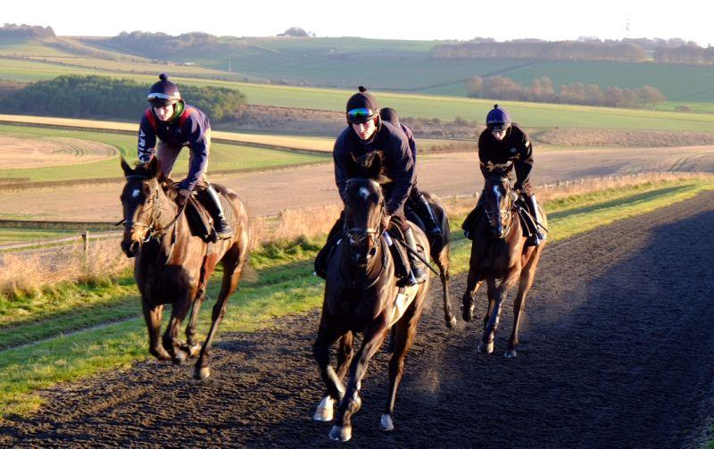 Minella Warrior and Blazon leading Thum Stone Blues and Royal Supremo