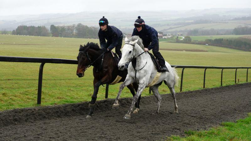 Harry Topper and Knockanrawley