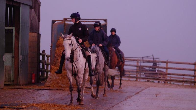 Knockanrawley and Silver Kayf coming back into the yard after first lot
