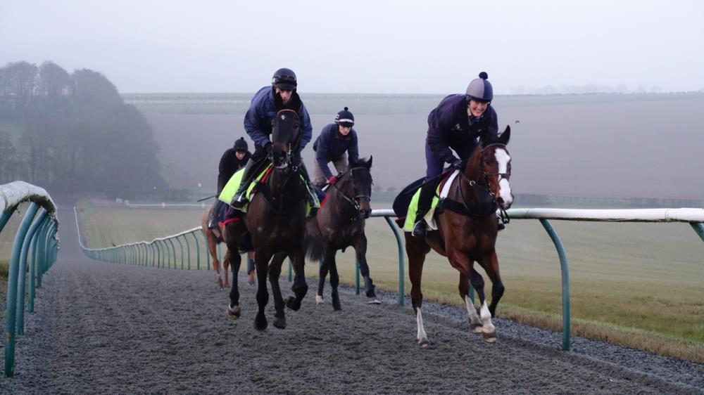 Cantering in Lambourn