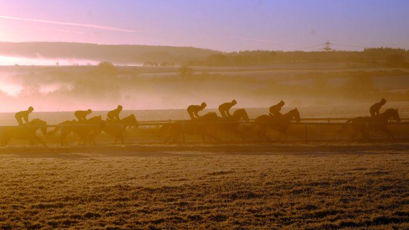 Second lot cantering