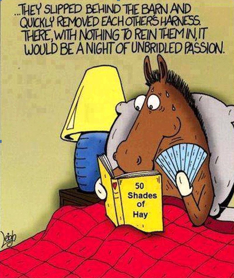 A weekends reading for the horses..