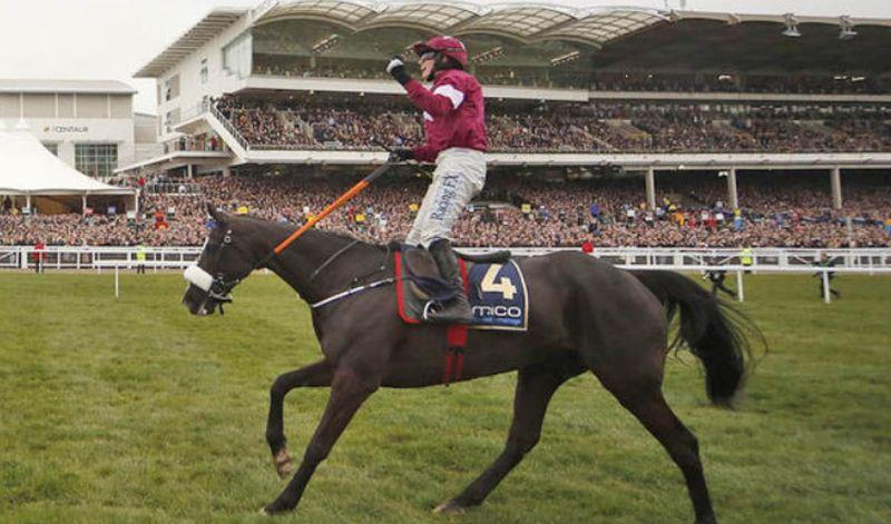 Don Cossack and Bryan Copper celebrate winning last years Timico Cheltenham Gold Cup.