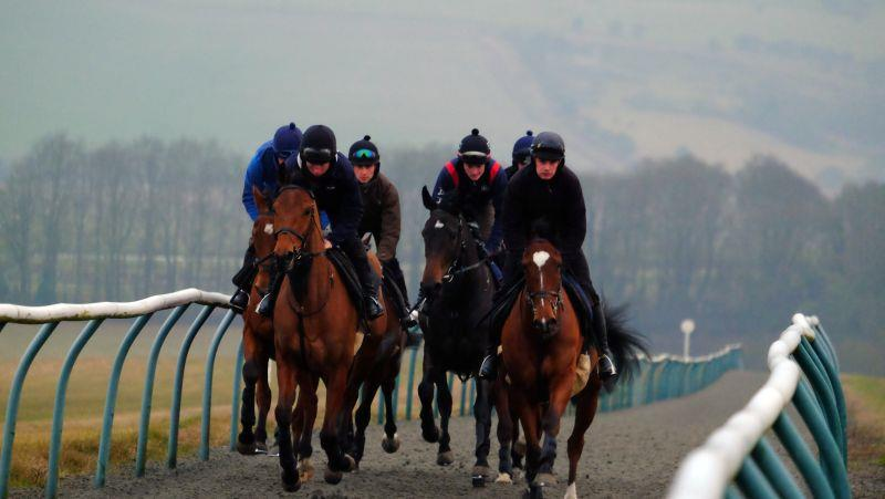 Cantering up Fishers Hill