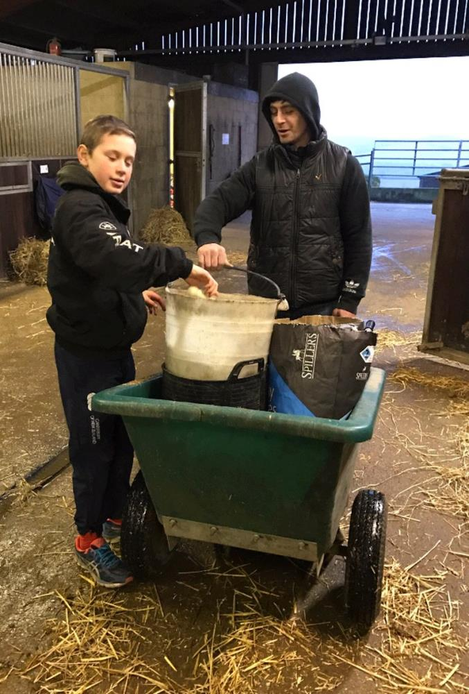 Archie helping George feed the horses last night
