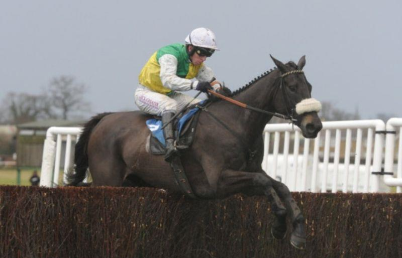 Many Clouds winning the Hennessy Gold Cup at Newbury